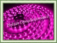 SMD5050 LED Flexible Strip(IP68 150led/roll)