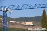 Topless tower crane TCT5013 (8t)