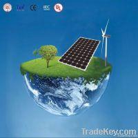 Double-Glazed Solar Panels/ Transparent Solar Modules