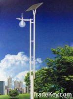 Solar LED Garden Lights (RS-GL002)