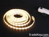 AC110V/220V LED Strip Light
