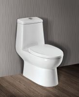 Ceramic Water Closet V40 (1 piece/Dual flush/Nano finished/S trap)