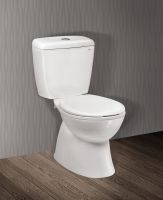Ceramic Water Closet (2 pieces/Dual flush/Nano finished/S trap)