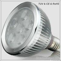 LED Light Par30