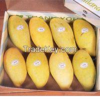 Fresh Mango , Sweet mangoes , Pakistani mango
