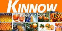 Citrus fruit (Mandarins Kinnow), Mango Seasonal ,Potato( White &Red) ,Rice Basmati & IRRI