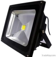 Bosnee Flood Light 50W