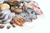 All kind of Seafoods