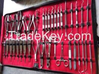 Dental instruments kit