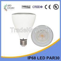 15w warm white dimmable led par 30 bulb