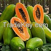 Papaya (Red Lady) Fresh Fruit