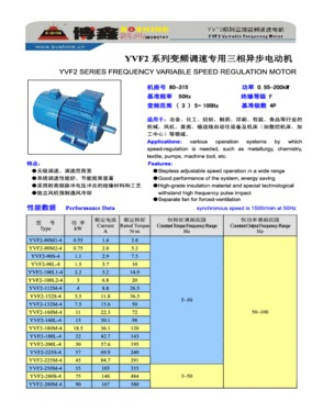 Y AC IEC Induction Electrical Motor
