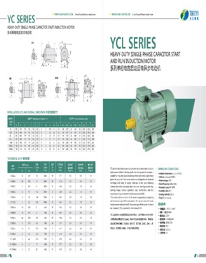 YCL Series Single-phase Capacitor-Start Asynchronous Electric Motor