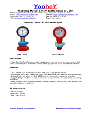 Hammer Union Unitized pressure gauges