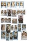 resin owl decoration