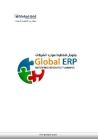 GLobal ERP