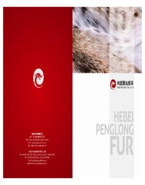 Hebei Penglong Fur Co., ltd
