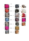 100% wool fashion ladies hats with flowers, berets