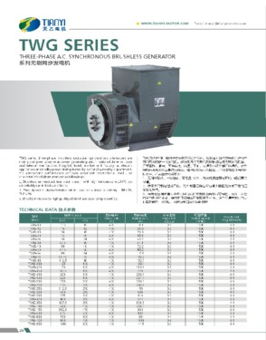 TWG Series Three-phase A.C.Synchronous Brushless Generator