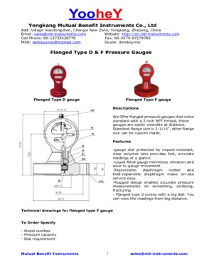 Type D & F Flanged Pressure Gauges