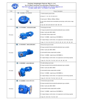 HXG Shaft mounted helical speed reducer TA series,