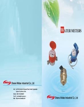 water meter,digital water meter, remote reading water meter