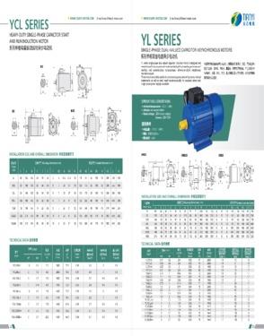 YL801-2 Single Phase Electric Motor