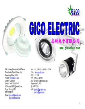 GICO ELECTRIC CO., LIMITED