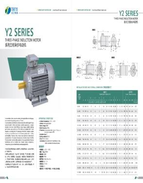 Electric Motor Y2 Series