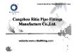 Cangzhou Ritia Pipe Fittings Manufacture Co., Ltd