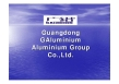 Galuminium Group Co., Ltd.