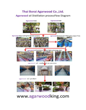 Thai Borai Agarwood Co., Ltd.