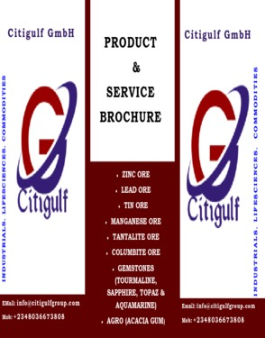 CITIGULF GMBH LIMITED