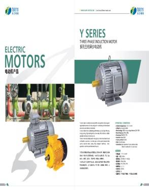 Y Three Phase A.c. Motor