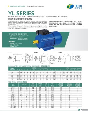 YL Series Single-phase Dual-valued Capacitor Asynchronous Motor