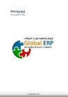 Global ERP System