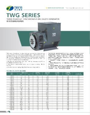 TWG Series Three Phase Brushless generator