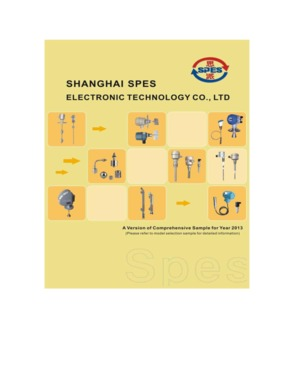Shanghai SPES Electronic Technology Co.