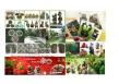 Quan Zhou LiYa Craft Gift Co;Ltd