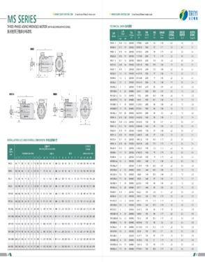 MS Three Phase Aluminium Motor