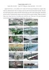 Lingxian Renhe Textile Co., Ltd.