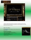 Luxury Brand Shoes for Men