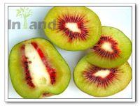 Красный плод...