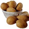 네덜란드 신선한 감자