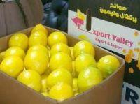 Свежий лимон...