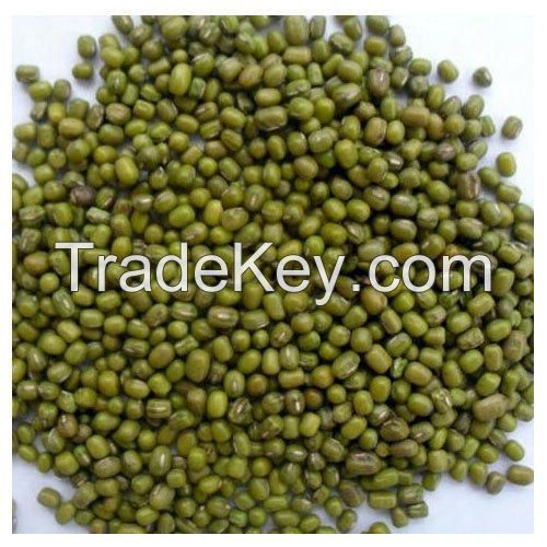 High Quality Peeled Spit Vigna Beans From Vietnam