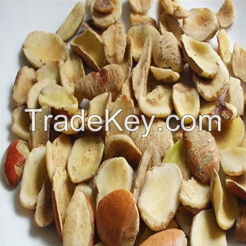 Best Quality Colorful Fresh Ogbono Nut