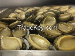 Frozen Gold abalone for sale