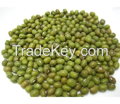DRIED MUNG BEAN, SEED FROM BRAZIL