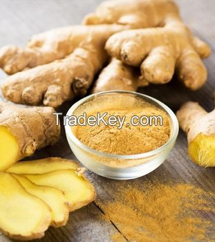 Dry Ginger Powder Dehydrated Ginger Powder